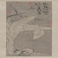 徐渭梅花蕉叶图轴-明朝-花鸟