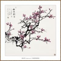 梅报新春97X97-海阳美协主席赵杰水墨作品
