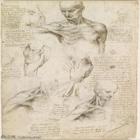 【印刷级】YHR131403029-世界著名绘画大师达芬奇DaVinci油画作品高清大图蒙娜丽莎达芬奇世界著名油画作品高清图片-64M-3951X5671