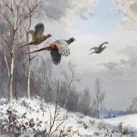 【打印级】YHR181455078-约翰西里尔哈里森John Cyril Harrison英国画家高清绘画作品集-21M-3256X2288
