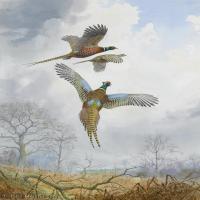 【打印级】YHR181455077-约翰西里尔哈里森John Cyril Harrison英国画家高清绘画作品集-21M-2304X3232