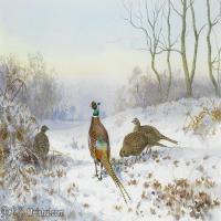 【欣赏级】YHR181455043-约翰西里尔哈里森John Cyril Harrison英国画家高清绘画作品集-20M-3232X2168