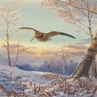 【欣赏级】YHR181455048-约翰西里尔哈里森John Cyril Harrison英国画家高清绘画作品集-20M-2222X3207