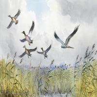【欣赏级】YHR181455055-约翰西里尔哈里森John Cyril Harrison英国画家高清绘画作品集-20M-3296X2200