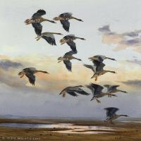 【欣赏级】YHR181455042-约翰西里尔哈里森John Cyril Harrison英国画家高清绘画作品集-20M-2192X3192