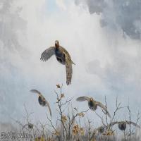 【打印级】YHR181455130-约翰西里尔哈里森John Cyril Harrison英国画家高清绘画作品集-23M-3384X2472
