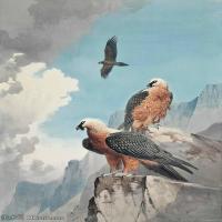 【欣赏级】YHR181455040-约翰西里尔哈里森John Cyril Harrison英国画家高清绘画作品集-19M-2174X3207