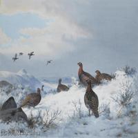 【打印级】YHR181455131-约翰西里尔哈里森John Cyril Harrison英国画家高清绘画作品集-24M-3360X2504