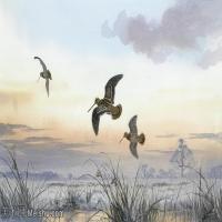 【欣赏级】YHR181455037-约翰西里尔哈里森John Cyril Harrison英国画家高清绘画作品集-19M-3256X2088