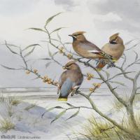 【打印级】YHR181455069-约翰西里尔哈里森John Cyril Harrison英国画家高清绘画作品集-21M-2288X3232