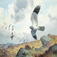 【欣赏级】YHR181455035-约翰西里尔哈里森John Cyril Harrison英国画家高清绘画作品集-19M-3200X2119