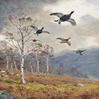 【欣赏级】YHR181455053-约翰西里尔哈里森John Cyril Harrison英国画家高清绘画作品集-20M-2251X3206