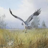 【欣赏级】YHR181455049-约翰西里尔哈里森John Cyril Harrison英国画家高清绘画作品集-20M-3232X2208