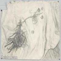 【超顶级】SM-10122906-素描静物美考优秀试卷艺考高分卷铅笔画美术生作品图片下载-194M-9792X6933