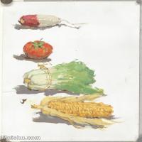 【印刷级】SF-10120512-水粉静物名师示范临摹绘画高清图片蔬菜水果下载高清图片-63M-3442X4812