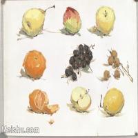 【印刷级】SF-10120513-水粉静物名师示范临摹绘画高清图片蔬菜水果下载高清图片-124M-6808X4774