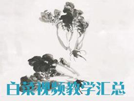 《国画初学者入门综合篇》-白菜完整作品-美术高考视频教学