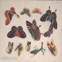 【欣赏级】GH6062935古画清代昆虫蝴蝶小品图册3册页图片-4M-1604X1035