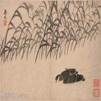 【印刷级】GH6061946古画边寿民-芦雁图十开(11)册页图片-68M-4873X3699
