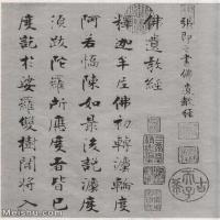 【欣赏级】SF529639书法小品张即之 佛遗教经图片-7M-1415X1782