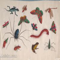 【欣赏级】GH6062941古画清代昆虫蝴蝶小品图册9册页图片-4M-1548X991