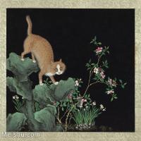 【欣赏级】GH6060041古画写意猫咪花猫(册页图片-7M-1667X1500