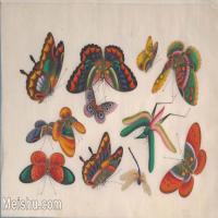 【欣赏级】GH6062939古画清代昆虫蝴蝶小品图册7册页图片-4M-1559X1012