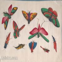 【欣赏级】GH6062937古画清代昆虫蝴蝶小品图册5册页图片-4M-1564X1017