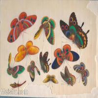 【欣赏级】GH6062930古画清代昆虫蝴蝶小品图册1册页图片-4M-1612X1052