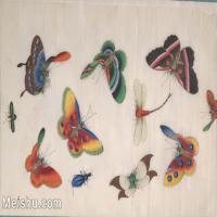 【欣赏级】GH6062934古画清代昆虫蝴蝶小品图册2册页图片-4M-1621X1053