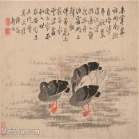 【印刷级】GH6061952古画边寿民-芦雁图十开(7)册页图片-68M-4857X3711