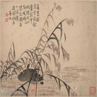 【印刷级】GH6061950古画边寿民-芦雁图十开(5)册页图片-69M-4890X3717