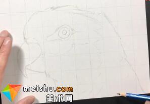「素描」美术教程(英文)7-04-学习依照照片画素描