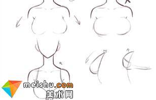 「輕微課」人物不同的乳量表現講解-人體結構與動態