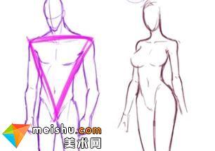 「輕微課」男女身體區別講解-人體結構與動態