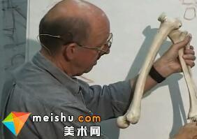 脚部解剖素描-人体素描示范10(Feet)