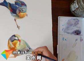 「水彩」双鸟报喜-手绘帮