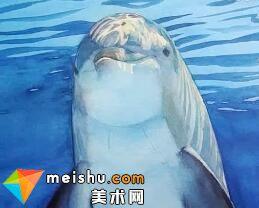 「水彩 我的水色时光」海豚-美术高考视频教学