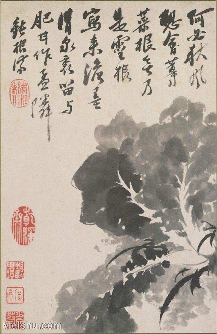 【打印级】GH6062361古画清-石涛花卉册(5)册页图片-26M-2389X3667_55772603.jpg