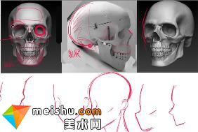 「轻微课」动漫人物头骨绘画介绍-人体结构与动态