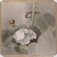 【印刷级】GH6080232古画花卉鲜花鸟小品图片-34M-3048X4000