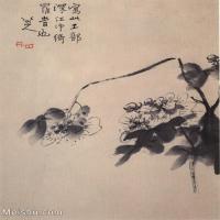 【欣赏级】GH6064780古画清朱耷八大山人-花鸟画册-(24)册页图片-3M-1000X1175