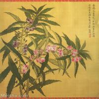 【打印级】GH6060464古画清张伟写生花卉册9册页图片-9M-1700X2051