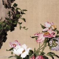 【印刷级】GH6061052古画郎世宁花鸟16张(7)-清朝-意大利-花卉-植物册页图片-136M-6364X7496