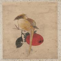 【印刷级】GH6080229古画花卉鲜花鸟小品图片-23M-2421X3441