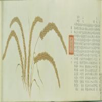 【超顶级】GH7280527古画植物瑞谷图原始镜片图片-1360M-29750X7974