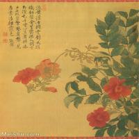 【打印级】GH6060465古画清张伟写生花卉册8册页图片-10M-1700X2062
