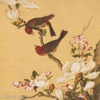 【印刷级】GH6101001古画-清意大利郎世宁-花卉综合版本--海棠玉兰册页图片-83M-3819X4562_57536382