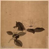 【印刷级】GH6061138古画陈洪绶-人物山水花鸟册页(4)-花朵册页图片-56M-4000X4901