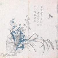 【印刷级】GH6080219古画花卉鲜花鸟小品图片-52M-4828X3790